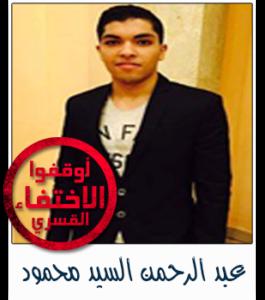 عبد الرحمن السيد محمود