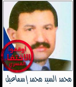 محمد السيد محمد إسماعيل