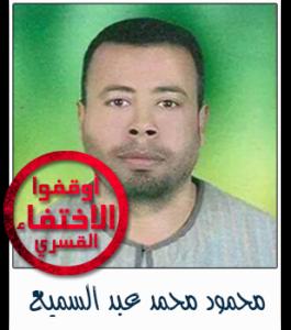 محمود محمد عبد السميع